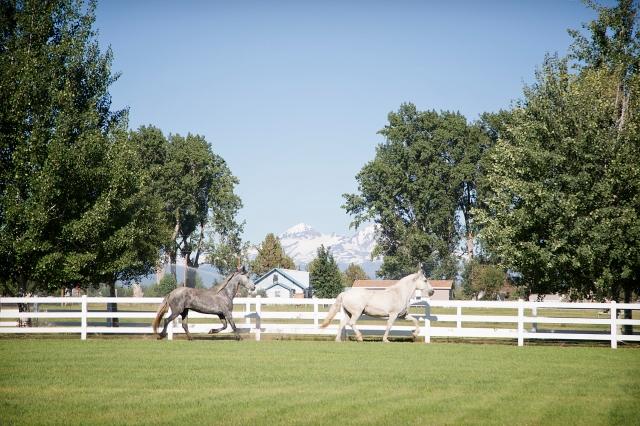 20460 Harper Rd. Bend, OR 97701 - Horse property for sale